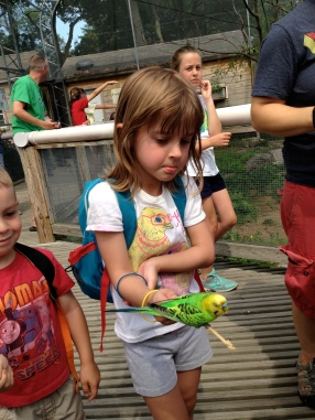 Some people look adorable while feeding the budgies.